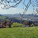 hier geht´s durchs Gras, recht anspruchsvoll, hinunter nach St. Gallen.