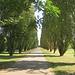 Il percorso ciclabile che porta alla Certosa di Pavia.
