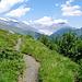 Nessjeri mit Blick auf den Grossen Aletschgletscher
