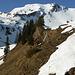 Aufstieg abwechselnd auf Schnee und dem aperen Bergweg nach Gurbs Metteberg, darüber nochmals der Gurbsgrat