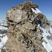 Die vom Vorgipfel 2398 abzukletternde gutgriffige und -trittige Steilstufe (5m, II)