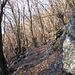 La parte iniziale del percorso attraversa con lunghi zig-zag un ripido ed esteso bosco di castagni. Il sentiero che da Lumino porta ai Monti di Saurù (1.000 m di dislivello) mantiene una pendenza sostenuta anche se mai eccessiva, ma soprattutto  mantiene  un'inclinazione sempre costante, permettendo di salire con un ritmo uniforme (per me il sentiero l'ha tracciato un geometra , magari svizzero…).