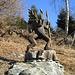 Una delle simpatiche sculture in legno disposte tra le baite dei Monti Saurù.