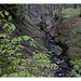 ein Bächlein fließt im Walde, ganz still und stumm ... Schwachsinn