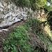"Den ""Gipfelfelsen"" entlang ..."