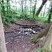 Lo Stagno della Tagliata è decisamente a secco ma pieno di girini, speriamo che le piogge previste lo riempiano.
