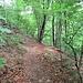 Il sentiero che scende a Mulino Simone.