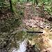 Anche nei periodi più secchi un po' d'acqua nel Rio della Pedana della Madonna c'è sempre.