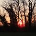 Sonnenuntergang im Biberland.