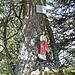 """Eine Erhebung im Wald ist als """"Prodel"""" ausgewiesen."""
