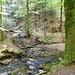 Unterwegs im Strümpfelbachtal