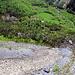 Bas du ravin de Perrayre. En face, le hameau des Courtenâs et la route de Derborence.