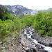 Torrent du Grand Tsené où devait se trouver la prise d'eau du bisse de Servaplane.