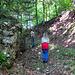 Endlich der erste Fels im Wald :-D