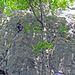 Kletterrouten an der Roggenflue Südwand.