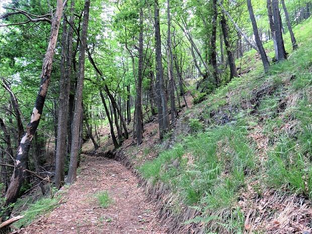 Il primo tratto del sentiero che porta dalla Forcella della Martica al Pass del Diavul è  stato risistemato per poter effettuare dei lavori di regimentazione di un impluvio...