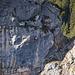 … Kletterpartie am Plankenstein