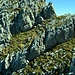 Schiberg: Die Scharte zwischen Süd- und Nordgipfel. Zuerst muss man in die schwarze Tiefe am unteren Bildrand hinabsteigen und dann ziemlich in der Bildmitte in den schattigen Spalt einsteigen.