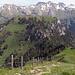 Blick zum nächsten Gipfelziel: Musenalp via Bleikigrat.