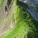 Blick vom Twäriberg auf den Grat hinüber zum Vorgipfel
