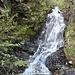 Wasserfälle so weit das Auge reicht...; das ganze Tal strotzt von unzähligen Fällen...