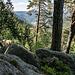 """Nicht lange nach dem Start zweigen wir südöstlich auf den (vllt. etwas hochgreifend bezeichneten) """"Alpinen Pfad"""" ab, der auf dem Kamm der """"Immelsbacher Höhe"""" entlang führt. Auf manchen Karten heißt der Pfad auch """"Felsenweg"""". Bald schon kommen wir hier zunächst an dieser namenlosen Felsgruppe vorbei ..."""