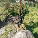 Von hier sehen wir unten das Städtchen Hornberg ...
