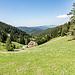 ... sowie kurz darauf westwärts zu den Höfen Storenberg und Althornberg, eingebettet in eine klassische Schwarzwald-Landschaft. Weiter unten im Wiesengrund kommen wir später auf dem Rückweg entlang.