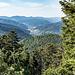 ... und tolle Ausblicke aufs Gutachtal unterhalb und die umliegenden Höhen bieten. Hier sind wir auf dem Rappenfelsen und schauen nordwärts. Hinten ist Hornberg sichtbar.