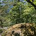 ... in der nach ca einem Kilometer die Aussichtsfelsen linksseitig zum Tal nacheinander nur so purzeln.