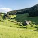 Danach machen wir eine Schlenker über die Wiesen des Hofs Althornberg (wenn man nach links oben blickt, hat man den Gegenschuss zum Hinweg). Wer's eilig hat, kann die Schleife aber auch ein Stück weiter unterhalb abkürzen.