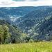 Anschliessend nochmals durch Wald am Südosthang des Storecks (942 m) entlang.  <br />Schliesslich treten wir wieder ins Freie hinaus und haben kurz danach linkerhand die perfekte Wiese für eine dritte Veschper gefunden: diesmal im hohen Gras und mit einem traumhaften Blick ins tief eingeschnittene Gutachtal. Darin sieht man auch ein Stück Trasse und einen Tunnelmund der berühmten [https://de.wikipedia.org/wiki/Schwarzwaldbahn_(Baden) Schwarzwaldbahn] (rechts der Bildmitte), sowie weiter hinten die Häuser von Triberg.  <br />Lange verweilen wir hier im Gras liegend, umsummt von allerei Insekten und umstrahlt von der warmen Mai-Sonne.