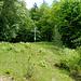Das Oberauer Heldenkreuz: Ein guter Aussichtspunkt über dem Ort.