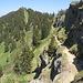 hier sind die zuvor schon angesprochenen zwei Steige zum Steineberg schön zu erkennen