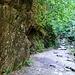 eindrucksvoller Wanderweg entlang des Bachs