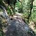 Wanderpfad zu den Wasserfällen