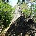 weitere Kletterstelle