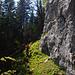 An einer Felswand entlang