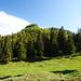 Der grüne Hügel müsste der Stuhlkopf sein