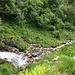 Il torrente attraversato (leggermente a monte del percorso corretto)