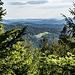 Die Blue Mountains des Black Forest: Ich starte von einem Wanderparkplatz an der Schwarzwaldhochstraße. Von da hoch in den Hang des Geißkopfs (schöne Blicke wie hier nach Süden und  in die Rheinebene) bis zur Wegspinne im Sattel zwischen Letzterem und der Südnase des Schwarzkopfs.