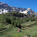 Auf der Alp Pesciüm