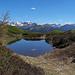 Idyllischer Bergsee auf Mottone mitten in den Heidelbeerstauden