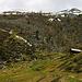 Kaum verliess ich den eigentlichen Waldgürtel, tauchte die kleine Alphütte Era da la Bescha auf exakt 2200m auf. Nun war mehr als die Hälfte der Höhenmeter zum Biwakplatz geschafft.