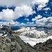 Panorama dalla vetta del Piz Rondadura, 3016 m