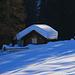 Foto vom 1. Besteigungsversuch am 5.1.2020 mit Ski:<br /><br />Tiefer Winter auf der Alp und grossen Waldlichtung Funtauna Grossa (1920m).