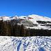 Foto vom 1. Besteigungsversuch am 5.1.2020 mit Ski:<br /><br />Blick von der grossen Lichtung Funtauna Grossa (1920m) zum Piz Terza / Urtirolapitz (2909m).