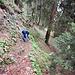 Die Pfadspur ist im zunehmend steilen Wald abnehmend leicht zu erkennen. Aber wer richtig ist, kann sie schon noch identifizieren.
