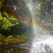 Ein Regenböglein und grünes Moos im Wasserfall