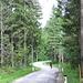Ciclabile Drava - tratto Lienz Greifenburg